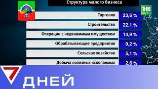 Лидером падения деловой активности Татарстана стал Бавлинский район. 7 дней | ТНВ