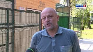 В Костромском зоопарке поселился котёнок ягуара