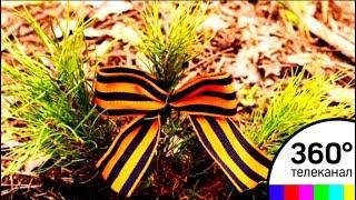 Акция «Лес Победы» состоится в Подмосковье 12 мая