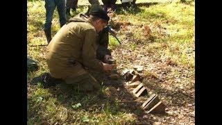 В Тарском районе началась перепись леса