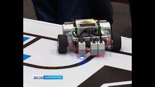В Калининграде прошёл фестиваль инженерно-технического творчества