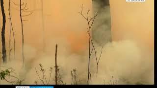 В Красноярском крае лесные пожары захватывают всё новые территории