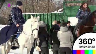 Конно-спортивная школа в Москве осталась на улице