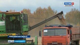 Более 2 миллионов тонн зерна собрали аграрии Новосибирской области