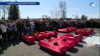 В Мясном бору захоронили останки бойцов Красной армии