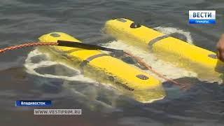 Акваторию Амурского залива в Приморье заполонили умные роботы