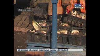Специалисты Россельхознадзора проверяют водоёмы, где разводят или ловят рыбу