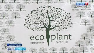 """В Архангельске завтра появится """"Аллея славы"""""""