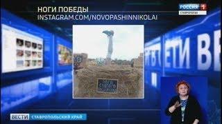 """""""Вести в сети"""" #249: ноги победы, пятнистый тренд и король кот"""