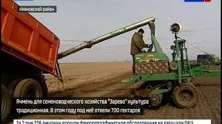 Растениеводы Ивановского района первыми начали сев ячменя