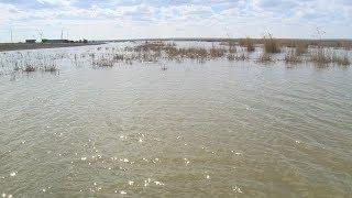 Озеро Цаца наполнилось водой