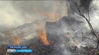 В южной части Башкирии сохранится чрезвычайная пожароопасность 5 класса