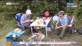 Пензенские археологи пытаются разгадать загадки Степановского городища