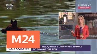 Десант высадится в столичных парках по случаю дня ВДВ - Москва 24