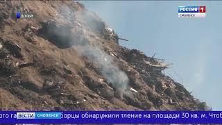 На Смоленщине снова загорелась мусорная свалка