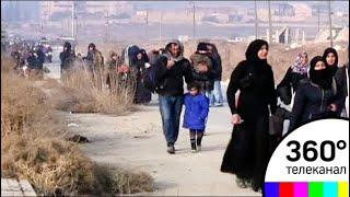 Вторая группа мирных жителей покинула город Дума в Восточной Гуте