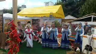 Виноградари Ставропольского края представили достижения на Фестивале молодого вина