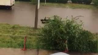 Коротко о погоде в Ставрополе