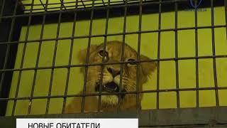 В Белгородском зоопарке очередное пополнение