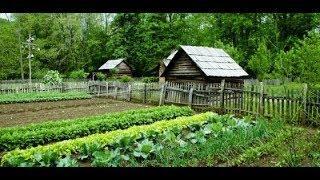 Какие новшества ждут садоводов этим летом?