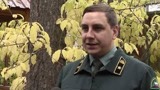 Общественники организовали расследование ЧП под Томском