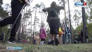 В Перми пройдет фестиваль скандинавской ходьбы