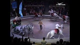 В Самарском цирке показали всемирно известный конный аттракцион