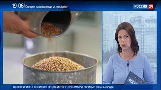 Российская гильдия пекарей и кондитеров прокомментировала «хлебный рейтинг» Роскачества