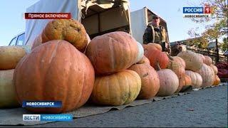 В Новосибирске проходят сельскохозяйственные ярмарки