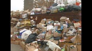 В Красноярске пенсионерка живёт на свалке
