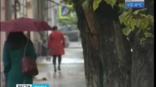Первой метелью осень удивила Иркутск