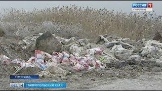 Свалка в Пятигорске привлекла всеобщее внимание