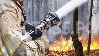 В Вологодской области начался пожароопасный сезон