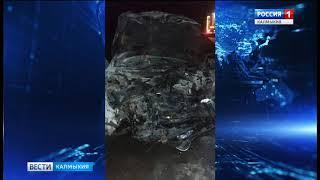 В Приютненском районе произошло ДТП со смертельным исходом