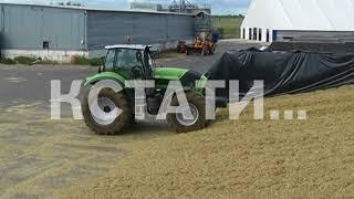 Проект «Эффективная губерния» стартовал в сельском хозяйстве Нижегородской области
