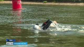 Благотворительный заплыв: двое уфимцев проплыли 21 км по реке Белой