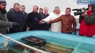 ЦИК зарегистрировал ещё 74 доверенных лица Бориса Титова