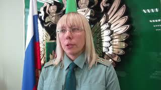 В Гусеве задержали литовца, пытавшегося вывезти 8 килограммов лекарств из региона
