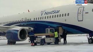 Белого медвежонка привезли на самолете из Норильска в Красноярск