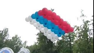 В Ярославле отметили День флага России