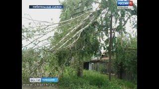 Из-за сильного ветра и грозы жители Алатырского района остались без электричества