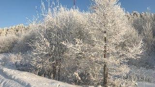 В Югре до весны продержатся морозы