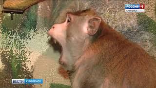 В смоленском зоопарке выбрали самого красивого