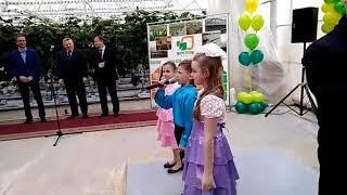 Открытие тепличного комплекса в Комсомольске