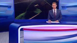 Ярославские аграрии получат более 20 млн рублей на закупку топлива