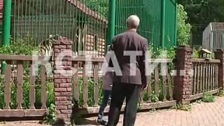 Городские власти приняли решение закрыть зоопарк «Швейцарию» за антисанитарию
