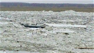 Зажатые во льдах. Спасатели Ханты-Мансийска эвакуировали людей с дрейфующего судна