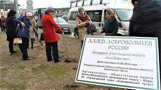 В Ханты-Мансийске появилась Аллея добровольцев