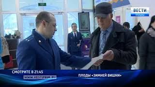 «Вести: Приморье»: Плоды «Зимней вишни» взошли во Владивостоке