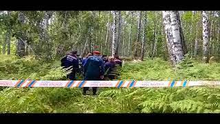 В сети появилось первое видео с места падения самолета в Новосибирске